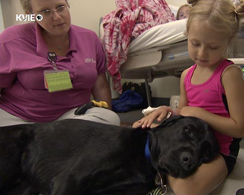 UC Davis Health - Huggie the Facility Dog